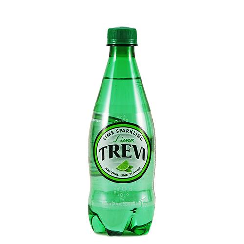 [트레비] 탄산 라임 500ml 20개 1박스 - 어라운지, 21,120원, 음료/주스/생수, 생수/탄산수